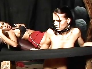 Greatest Pornographic Stars Morgan Ray And Jennifer Dark In Amazing Girly-girl, Petite Tits Xxx Scene
